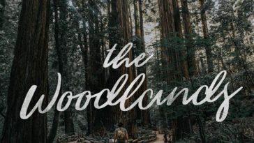 The Woodlands fontes cursivas gratuitas designe