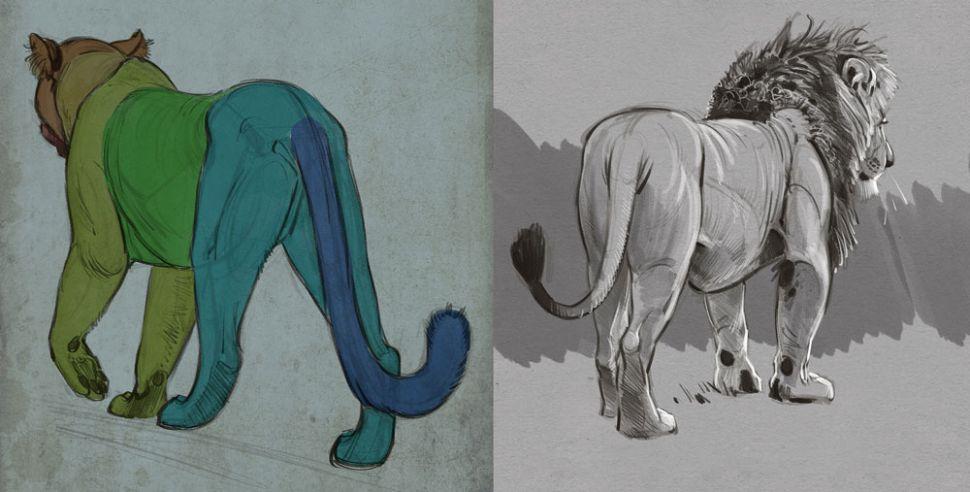 como desenhar animais profundidade designe