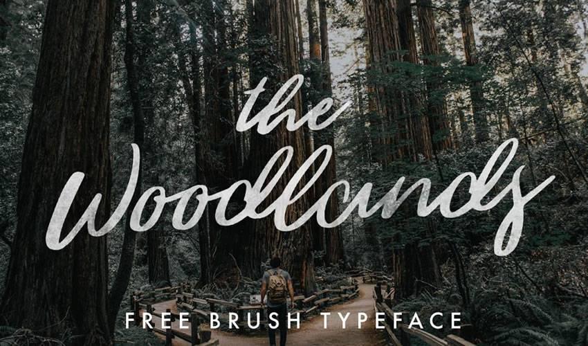 lettering fontes gratis 4